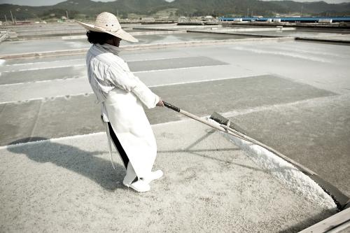 Солнечная соль Корея