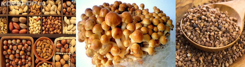 белок польза грибы крупы овощи орехи