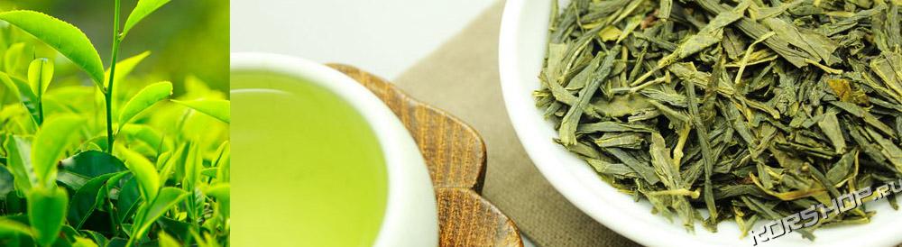 японский зеленый чай сентя маття ходзитя
