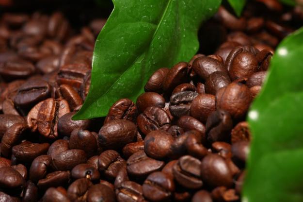 Зерна вьетнамского кофе.