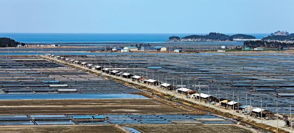Морская соль Корея